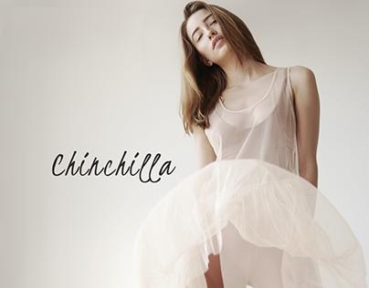 Chinchilla. Store design