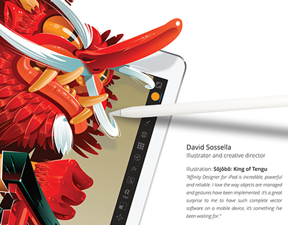 Affinity Designer for iPad Adv