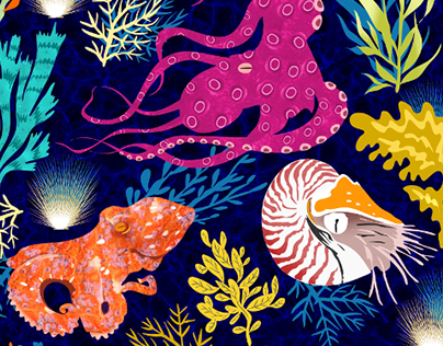 Cephalopods under the sea