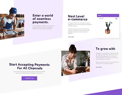 Website Design Concept - Online Payment Processing
