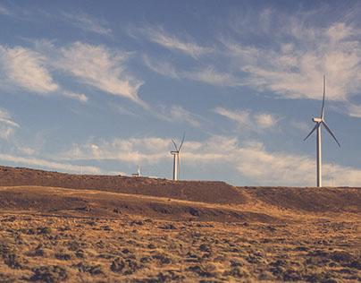Wind Landscape