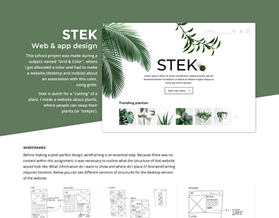 WEB & APP DESIGN | STEK