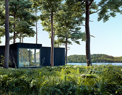 House on the river. Finland