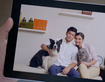 MSIG Pet Insurance & CNY videos