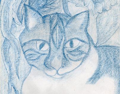 Chats, Cats, Katz