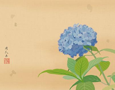 Hydrangea - 紫陽花