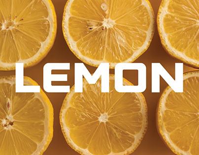 Lemon mini app concept login system
