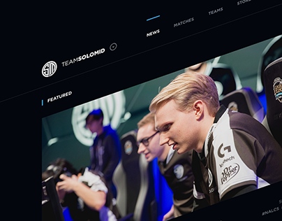TSM Website Concept