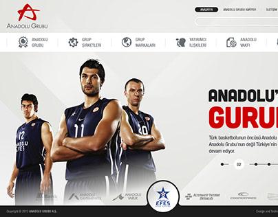 Anadolu Grubu / 2013