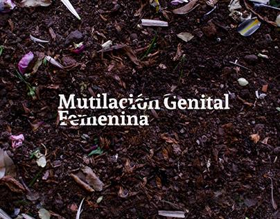 Mutilación Genital Femenina - Estadísticas