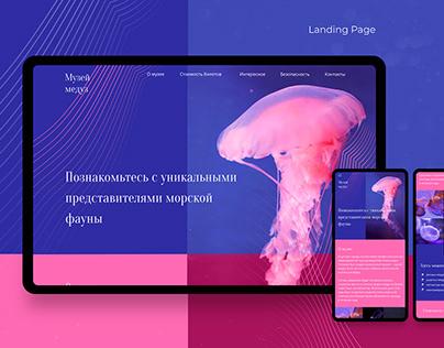 Web-design. Музей медуз