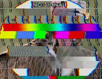 CarrionTV