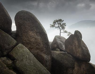 Granite Kingdom