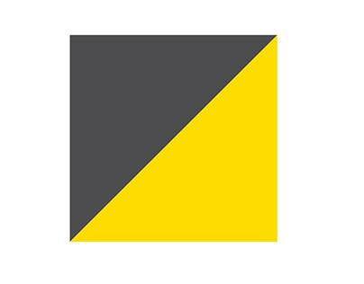 INTRO Branding and Identity design options