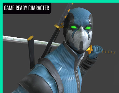 Game ready ninja warrior