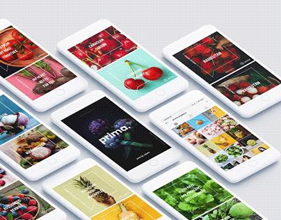 Prima organics: Digital marketing and brand identity