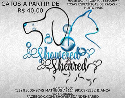 Logo e flyer Showered&Sheared