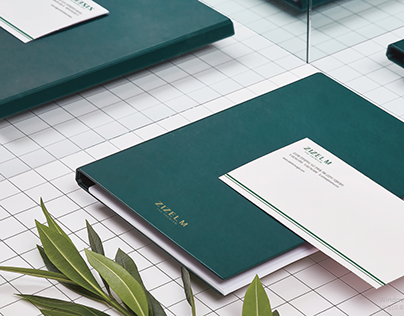 'ZIZELM' Branding design Project