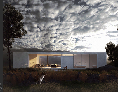 House IV - Concept Practice