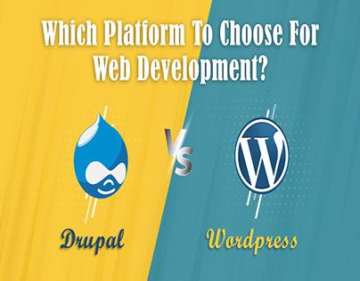 Drupal vs WordPress - The Best CMS!