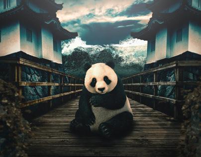 Panda Express - Photoshop challenge