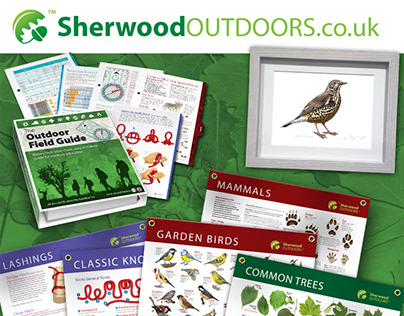 The Outdoor Field Guide - Banners and Prints