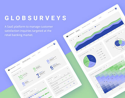 Globsurveys: a SaaS platform on customer satisfaction