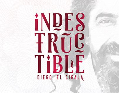 Diego El Cigala Indestructible