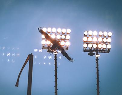 Photography - Auburn Football vs Alabama State