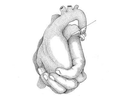 Manos que no dejan corazones vacíos