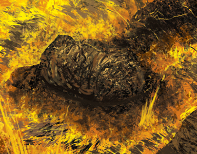Another Lava study