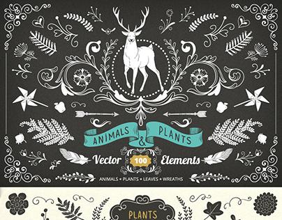 Animal & Plants