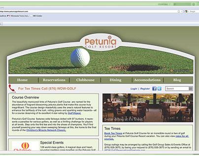 Concept Web Page