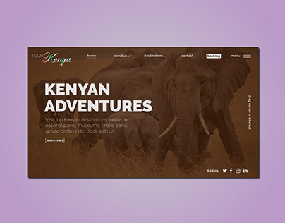 Kenyan Tours and Travel Company UI Concept