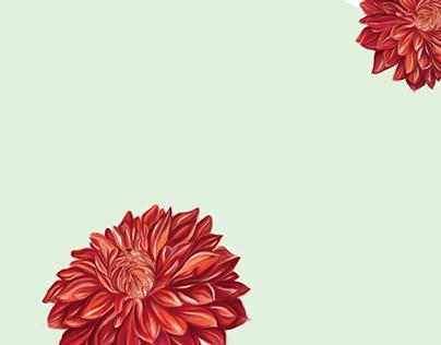 Digital Paintings - Illustration Work