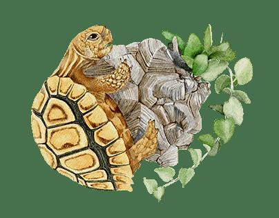Botanical creature illustration