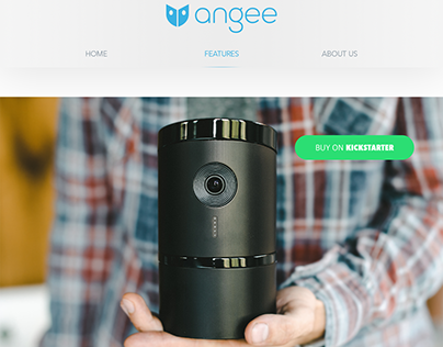 Angee Website Design