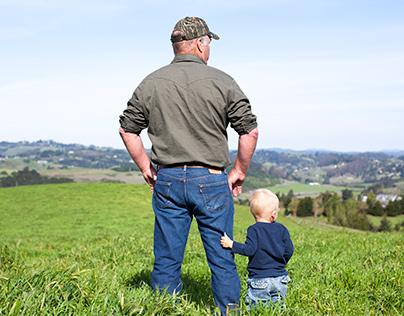 Sonoma County Dairies