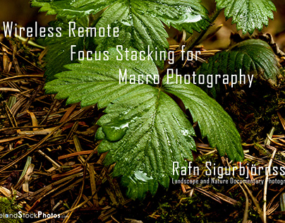 Wireless Remote Focus Stacking for Macro Photography