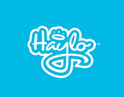 Haylo Hairbrush