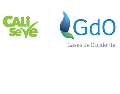 Campaña institucional Cali se ve para GdO