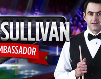 Ronnie O Sullivan Banner