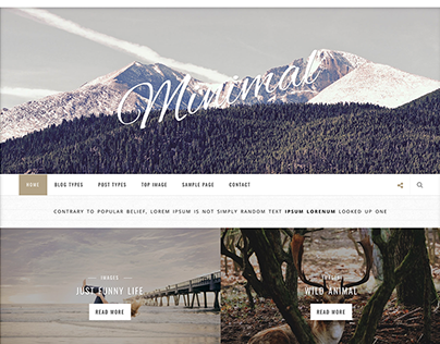 Clean And Minimal WordPress Blog Theme