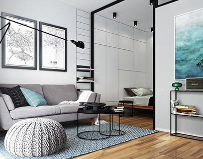 Apartment for men. Stockholm Sweden (29 sq.m.)