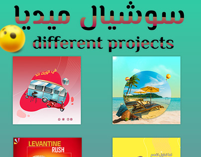 different projects social media