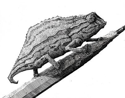 Endangered species 2 - Ink