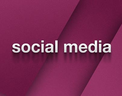 Social Media - Procter and Gamble - 2012-2013