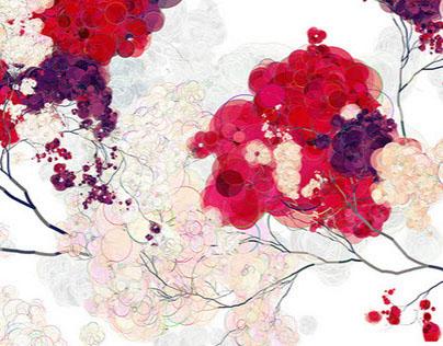 rosa flora (2015)