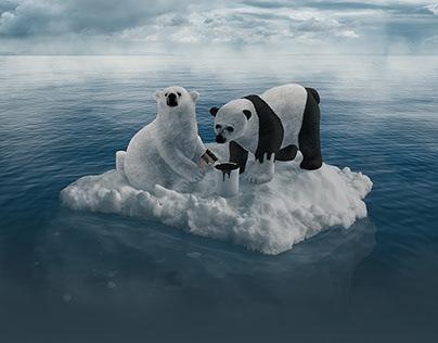 Polar Panda Bear