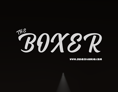 The Boxer - 3D Animation